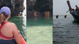 VIDEO: Turistas encontraron unas extrañas criaturas en una playa de Tailandia