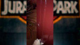 Creer o reventar: la puerta que suena como Jurassic Park es furor en las redes