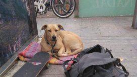 La policía mató a tiros a la perra de un joven en situación de calle