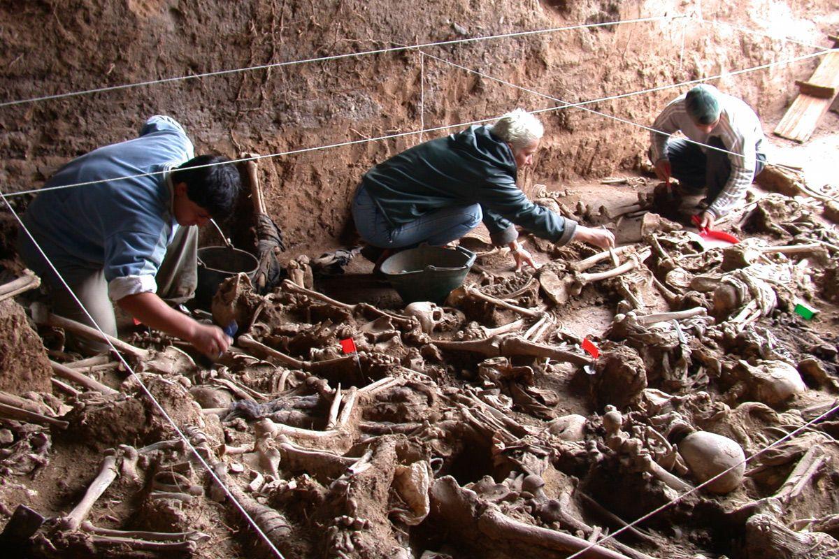 El Equipo Argentino de Antropología Forense suspende sus actividades porque el Estado no le gira los fondos
