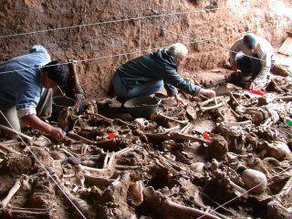 el equipo argentino de antropologia forense suspende sus actividades porque el estado no le gira los fondos
