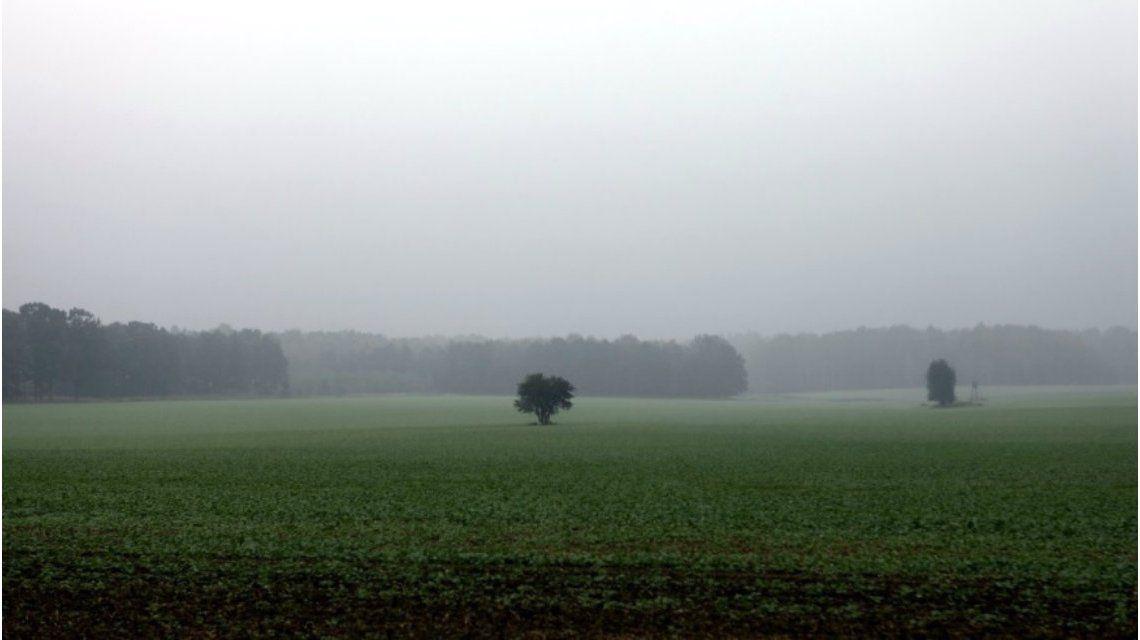 El campo argentino: de la super cosecha a las fumigaciones prohibidas