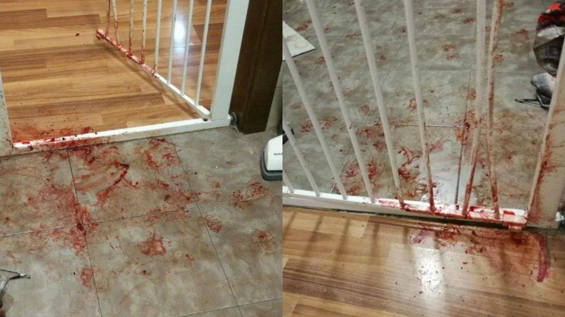 Fernández regresó a su casa para encontrarse una escena desagradable