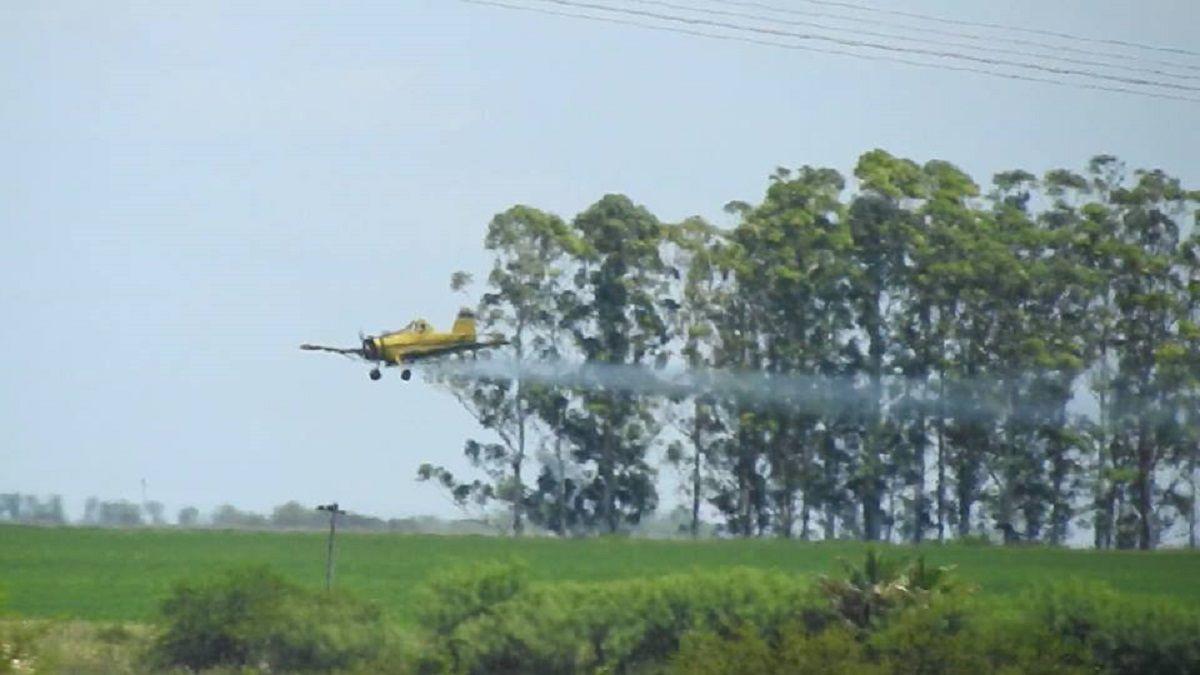 Un avión fumigó cerca de una casa
