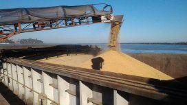 Desde África rechazan el trigo argentino por su mala calidad