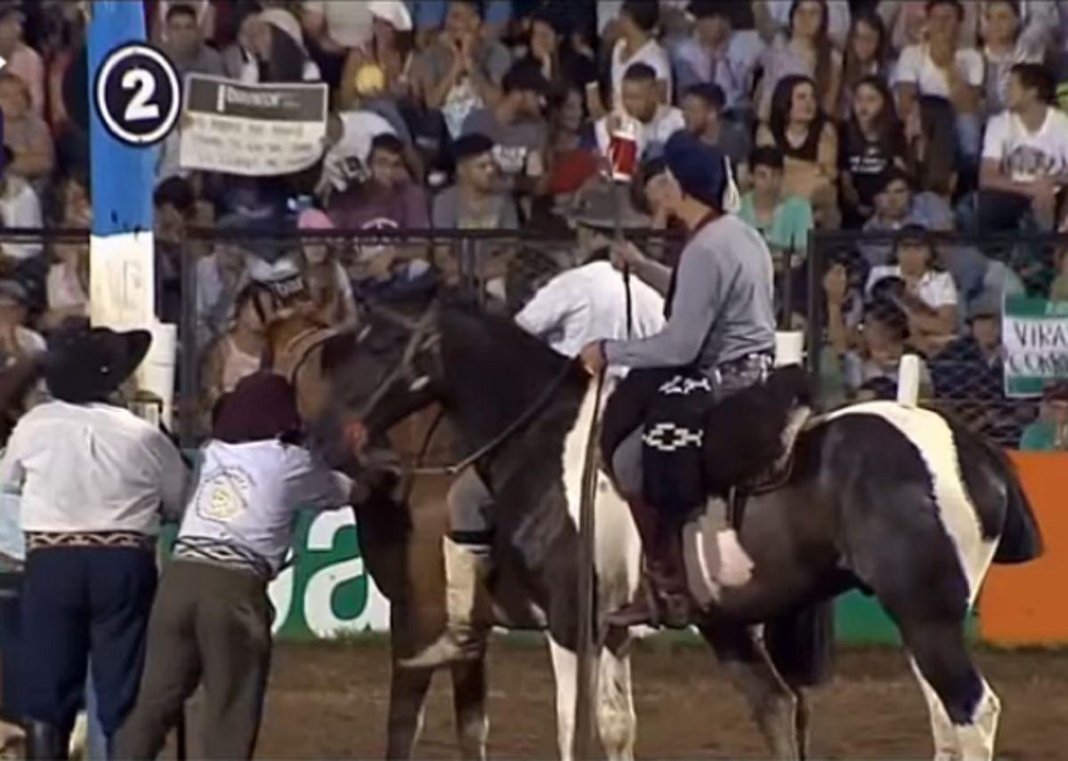 Un caballo murió durante la doma en el Festival de Jesús María