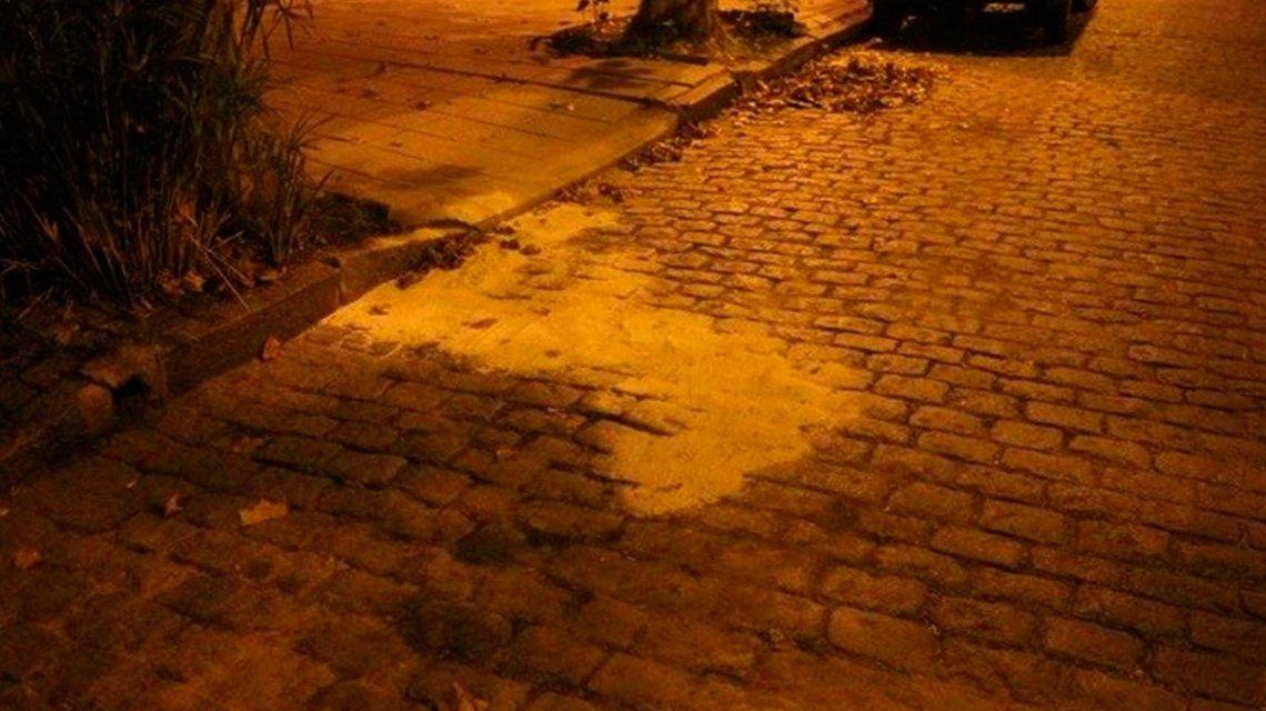 Crimen y misterio en San Fernando: un encapuchado mató de dos disparos a un visitador médico