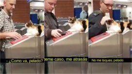 Metrodelegato, el video viral sobre un intruso en el subte