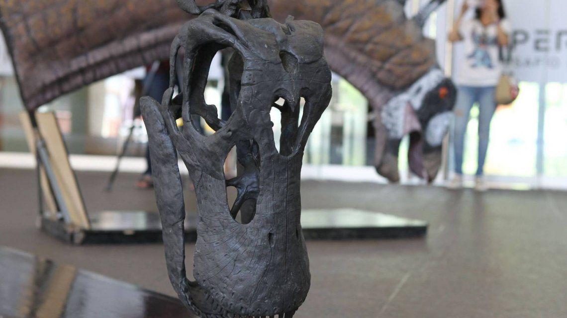 Maqueta de Bajadasaurus Pronuspinax exhibida en el Centro Cultural de la Ciencia. Foto: EFE
