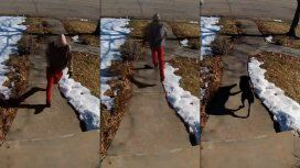 VIDEO: Así evita un perro labrador el robo a una casa