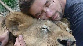 Murió devorado por los dos leones que tenía de mascotas