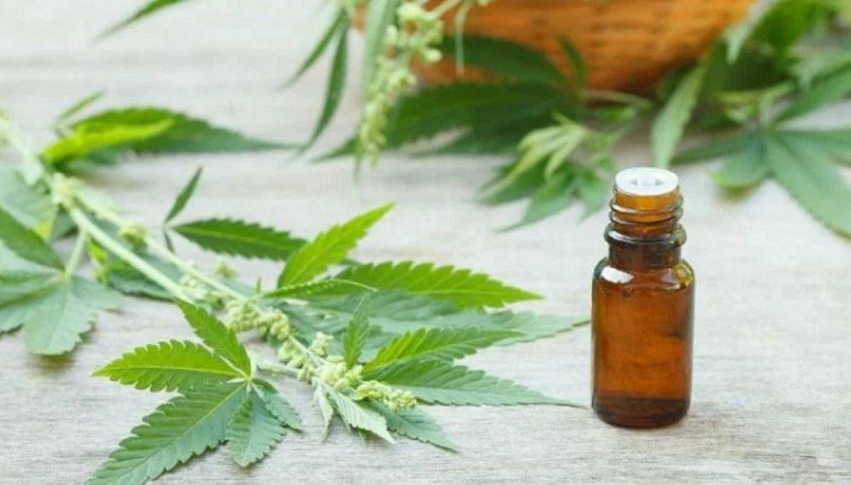 Ordenan a una obra social garantizarle el cannabis medicinal a una paciente con esclerosis múltiple y epilepsia