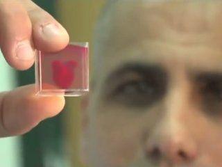 crearon el primer corazon 3d con tejido humano
