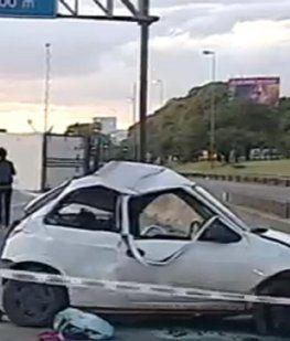 Un camión con 6 mil kilos de carne chocó y volcó en Panamericana