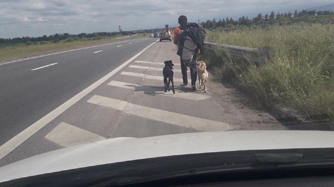Adoptó a dos perros en Chile y se vuelve caminando a Mendoza para no abandonarlos