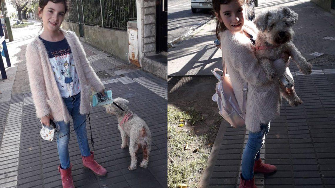 El mejor final: Jazmín encontró a su perra Pepa el día de su cumpleaños