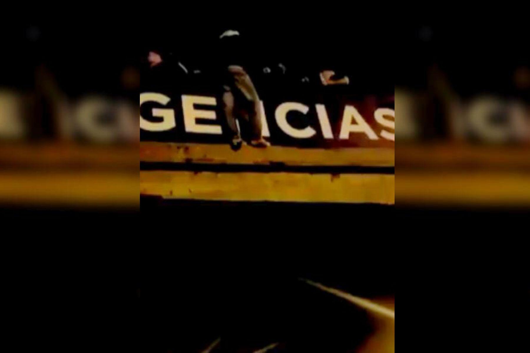 VIDEO: Un hombre intentó tirarse desde un puente a la General Paz