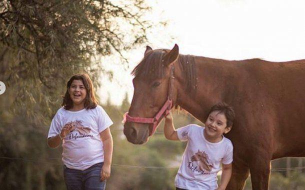 La educación, un pilar fundamental para empatizar con los animales. <br>