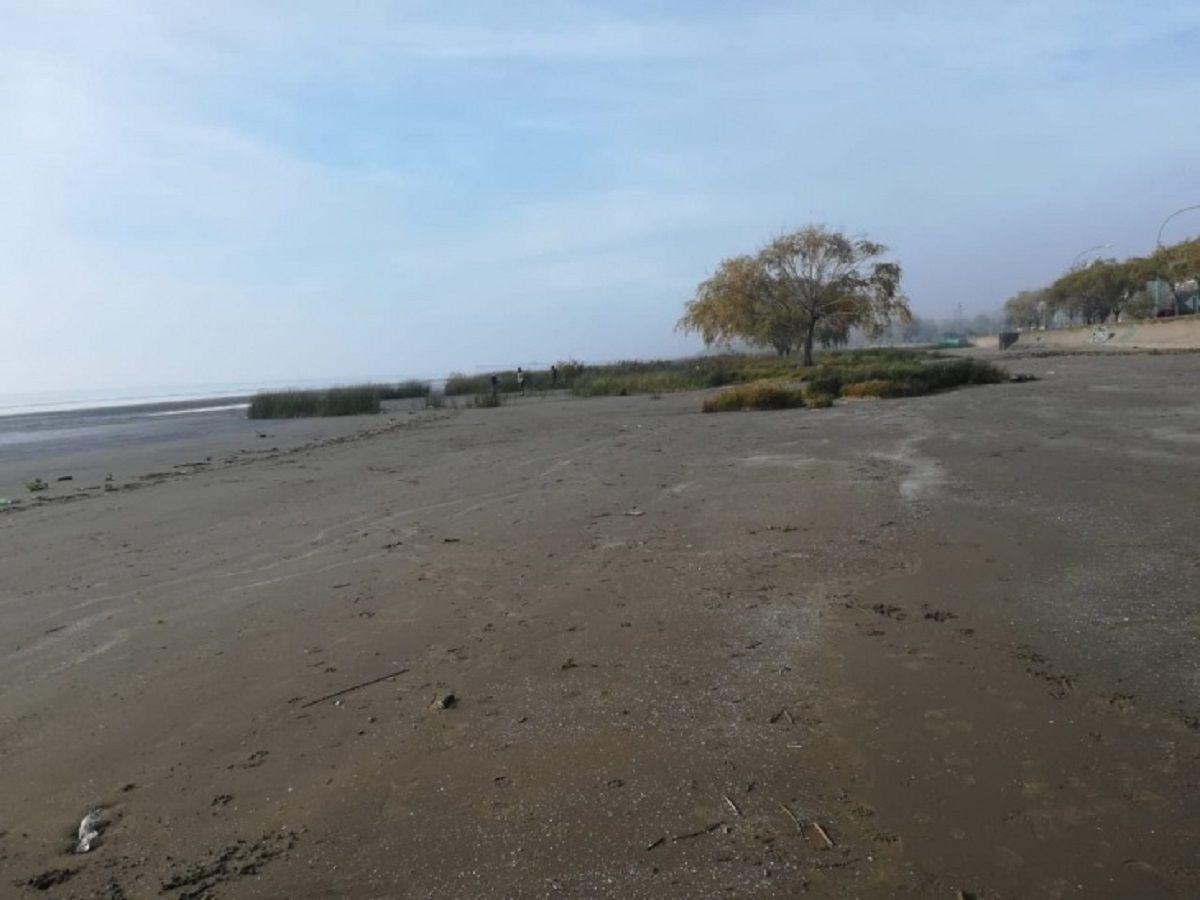 Los restos encontrados en Punta Lara son de una nena de 5 o 6 años
