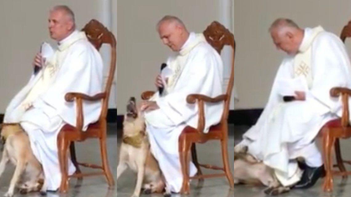 VIDEO: Un perro interrumpió una misa y la reacción del cura conmovió a todos