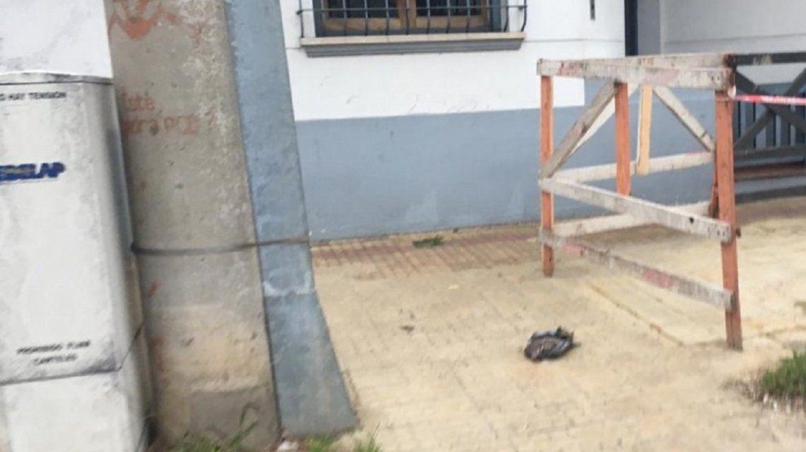 Por una paloma, todo un barrio de La Plata se quedó sin luz