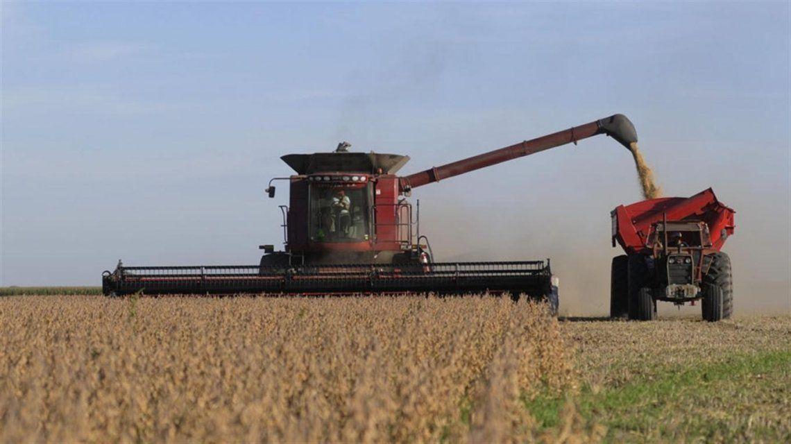 Apalancada por el campo, la economía volvió a crecer luego de un año
