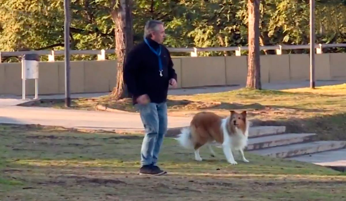 PASO 2019: Alberto Fernández sacó a pasear a su perro antes de votar