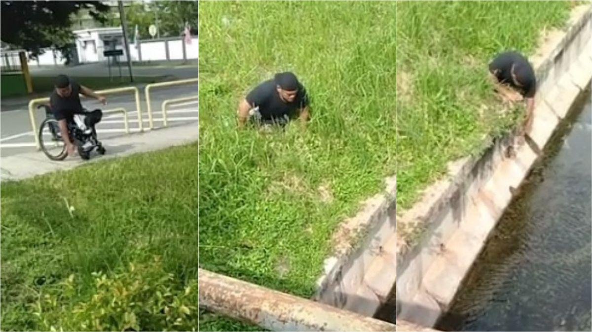 VIDEO: Un discapacitado salvó a un gatito de morir ahogado