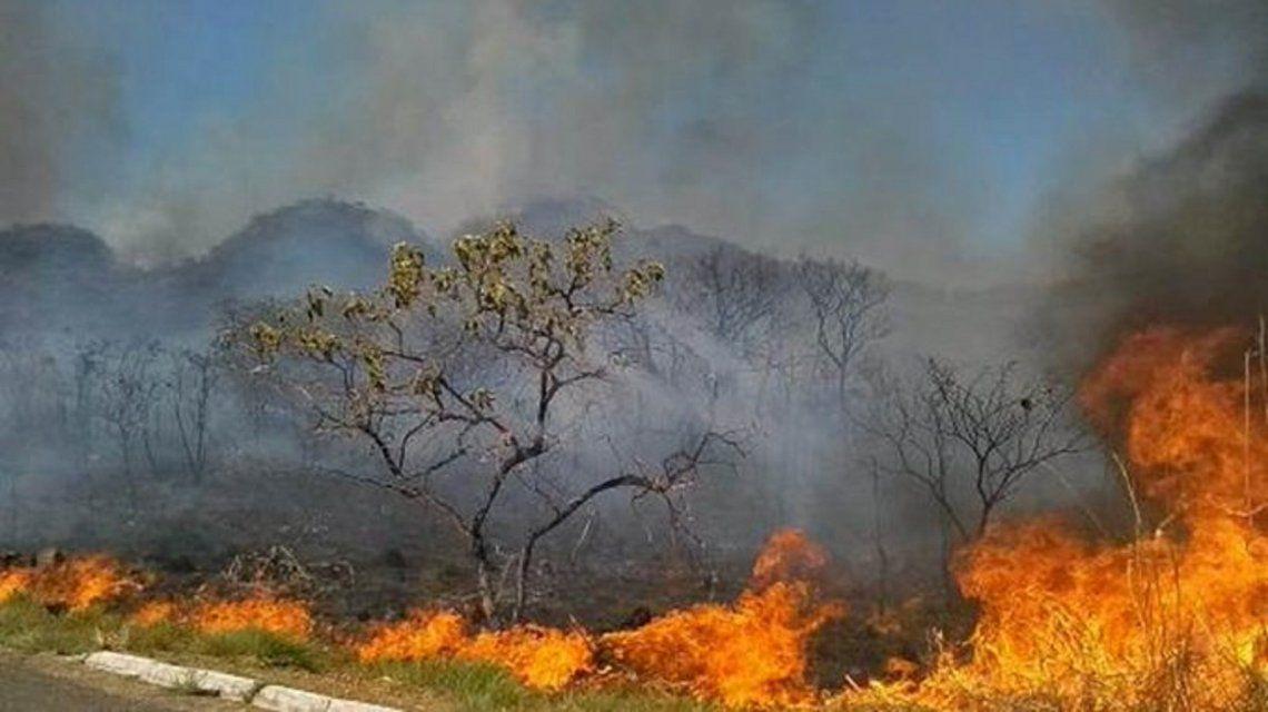 Macri dijo estar conmovido por los incendios en el Amazonas: Nuestro sistema de emergencias se encuentra a disposición