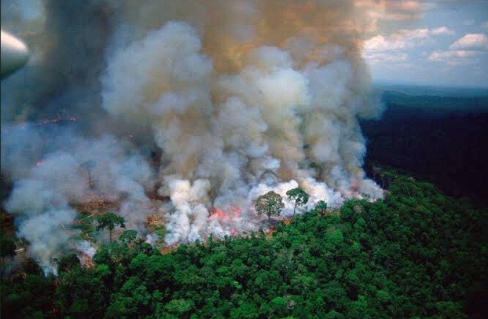Fotos de la NASA: así se ven los incendios en la Amazonía desde un satélite