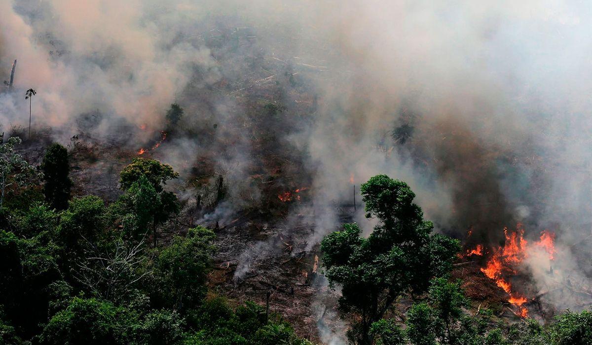 Documentos filtrados muestran que Bolsonaro tiene planes devastadores para el Amazonas