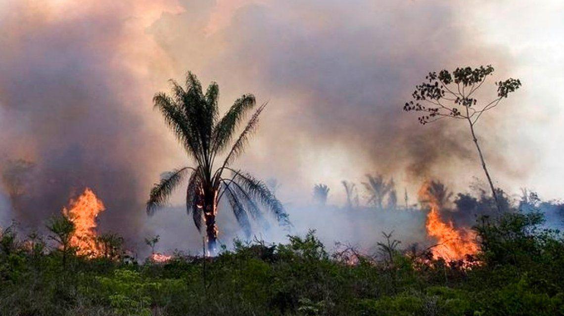 Incendios en el Amazonas: Bolsonaro prohíbe por dos meses la quema de campos