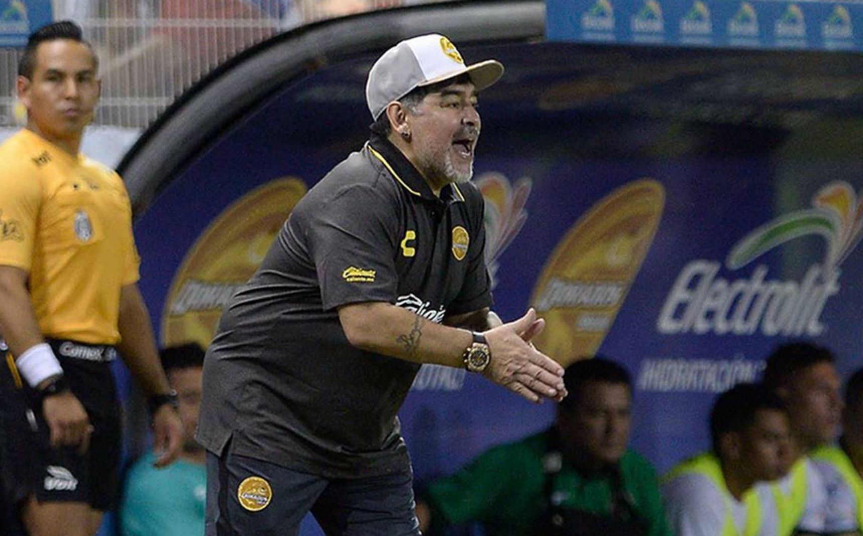 Pellegrino: Maradona quiere que el hincha de Gimnasia lo reciba