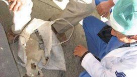 Un anciano llevó a su cachorro a un hospital y los médicos le salvaron la vida