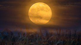 Luna de cosecha: el fenómeno astronómico que se dará este viernes 13