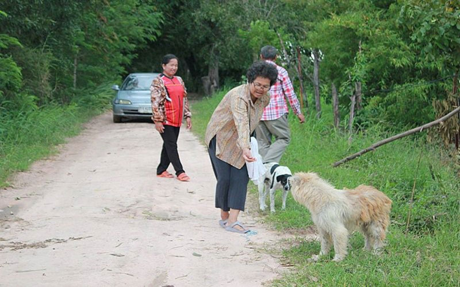 El perro se emocionó cuando vio a sus dueños