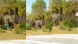 VIDEO: Una mujer apuñaló y dejó desangrar a un perro