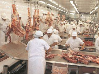 gremio de la carne obtuvo otro 17% en paritarias y una suma fija de 2.500 pesos para noviembre