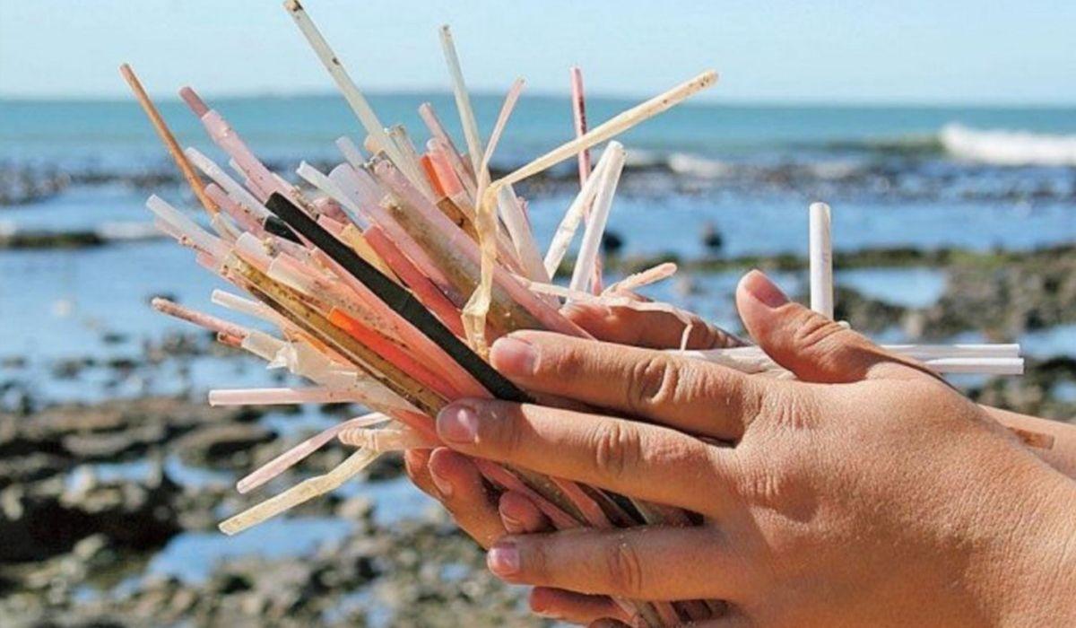 Ante la prohibición de su uso, ¿qué alternativas existen a los sorbetes de plástico?