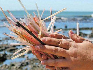ante la prohibicion de su uso, ¿que alternativas existen a los sorbetes de plastico?