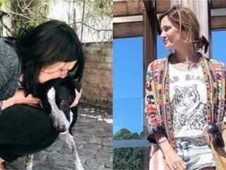 paula chaves logro el reencuentro de un perro con su duena: vale la pena involucrarse