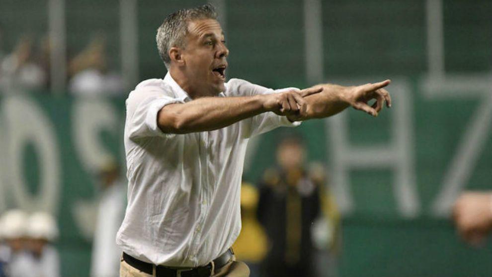 Independiente ya encontró al sucesor de Beccacece: Lucas Pusineri es el nuevo DT