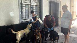 Un paseador sufrió muerte súbita y los perros quedaron solos en la calle