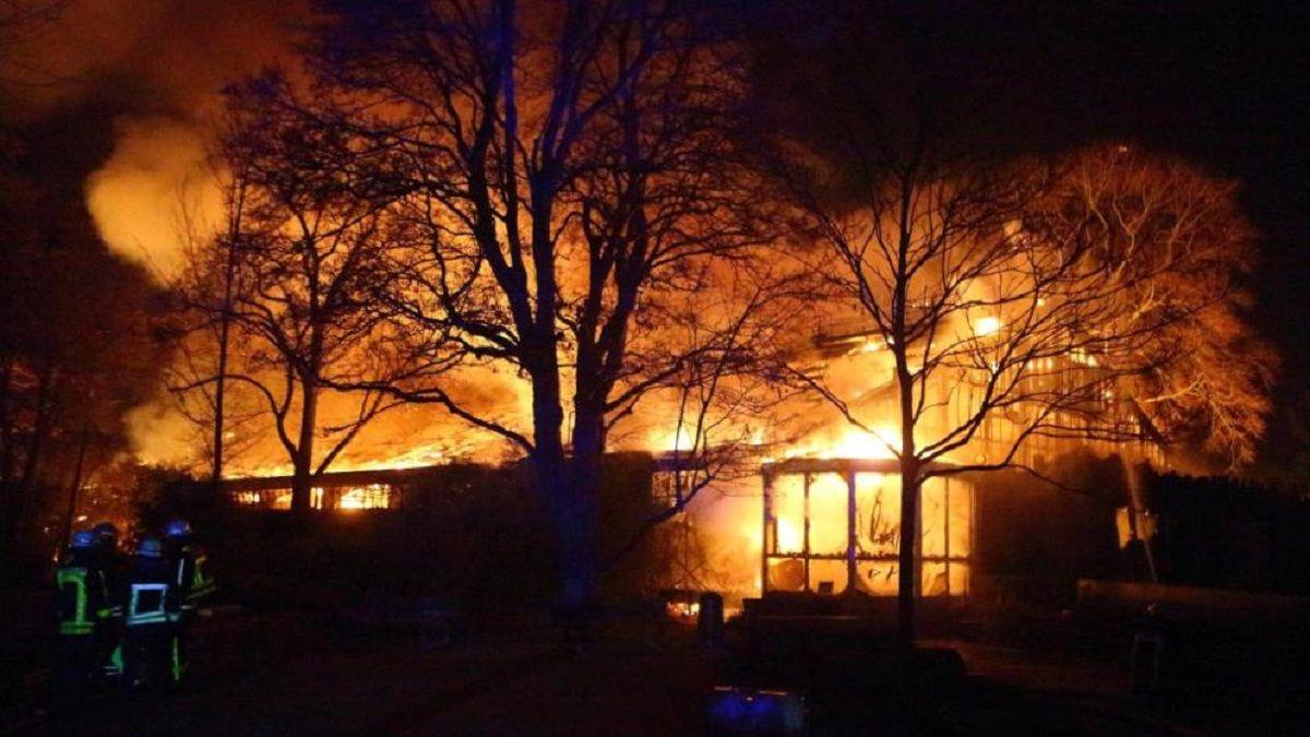 Cerca de 30 animales murieron al incendiarse un zoológico en Alemania