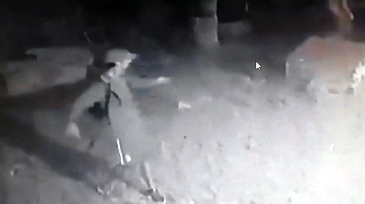 VIDEO: Entraron a robar a su casa y se llevaron hasta la pileta de lona y la manguera
