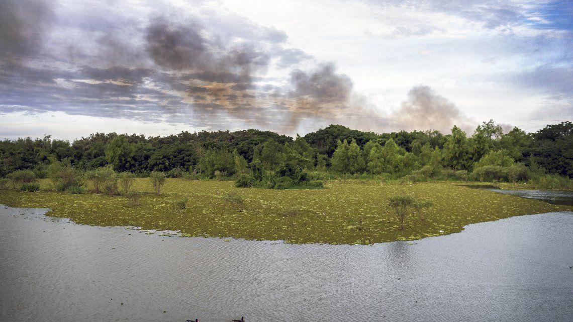 Cierran la Reserva Ecológica para determinar las causas de los incendios