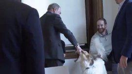 El gesto polémico de un candidato de Estados Unidos con un perro que se convirtió en spot de campaña