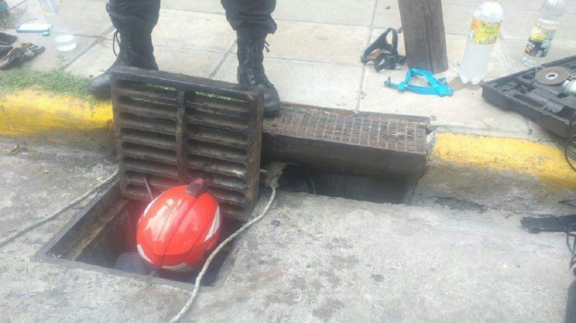 Bomberos de la Ciudad rescataron a dos perritos que cayeron en una alcantarilla