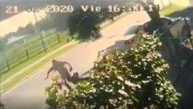 VIDEO: Arrastraron a una abuela por la calle para robarle la jubilación