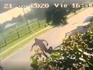 video: arrastraron a una abuela por la calle para robarle la jubilacion